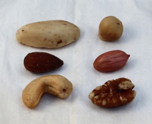 20130126_Mixed_nuts